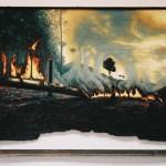 Alter Amazonas Tafelbilder, gebrannt